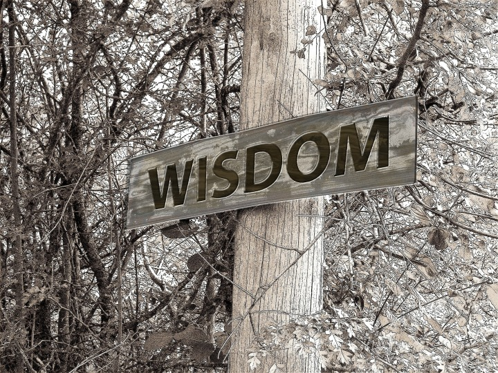 Wisdom Is The PrincipalThing